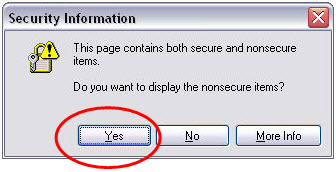 Security warning dialog window